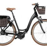 Fahrrad Riese und Mueller Swing3
