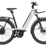 Fahrrad Riese und Mueller Nevo3