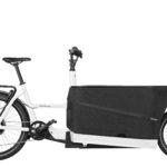 Fahrrad Riese und Mueller Packster 70