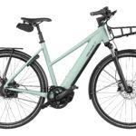 Fahrrad Riese und Mueller Roadster Mixte
