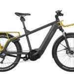 Fahrrad Riese und Mueller Multicharger
